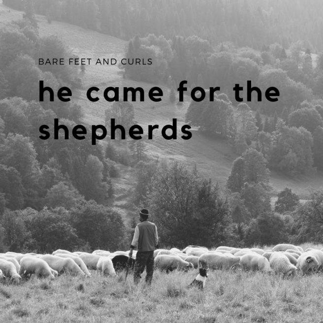 the little shepherd boy