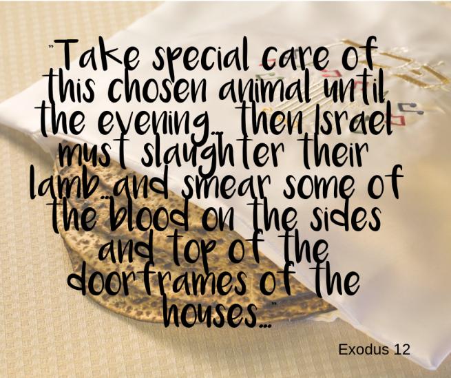 Passover: Slaughter the chosen animal
