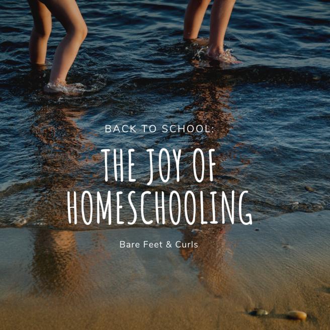 the joy of homeschooling