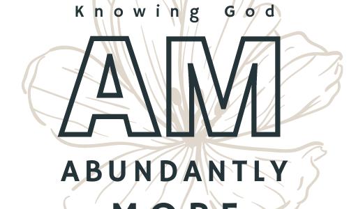 Abundantly More